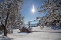 Region Winter Bild 4